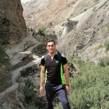 حامد کولیوند