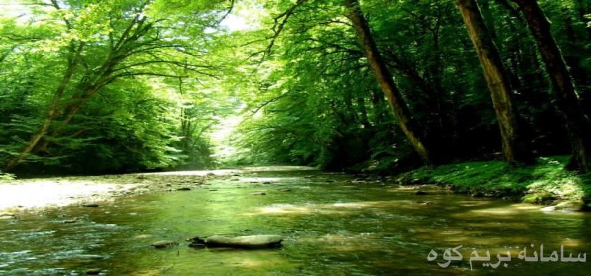 تور جنگل بکر و دیدنی خلارد