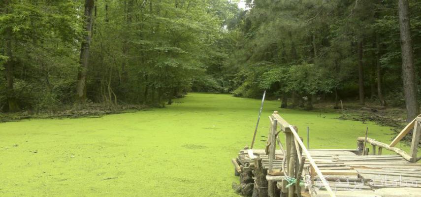تور یکروزه دریاچه سراوان و موزه میراث روستایی