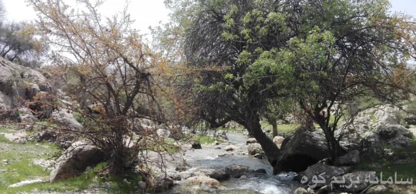 طبیعت فیروزآباد