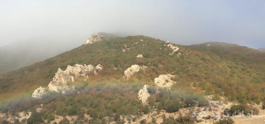 جنگل بورزین و قله چرمکش