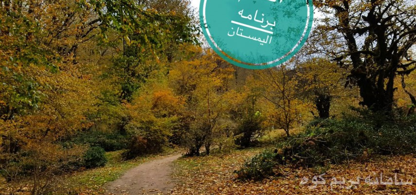 جنگل الیمستان، قله امامزاده قاسم