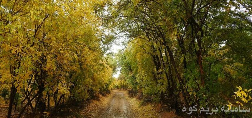 پاییز در طبیعت خاوران