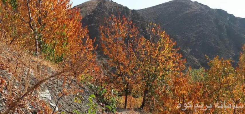 پیمایش پاییزی دره زیبای کشوه