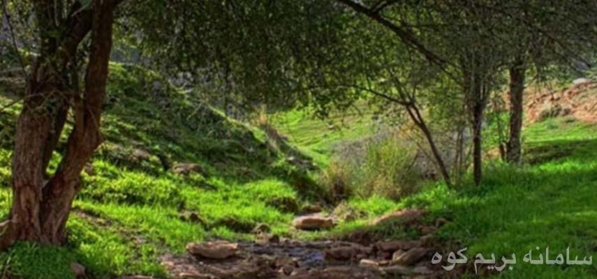 تور 4.5 روزه از تهران تا لرستان((بروجرد و خرم آباد)) و خوزستان((دزفول وپامنار و شوش و شوشتر))