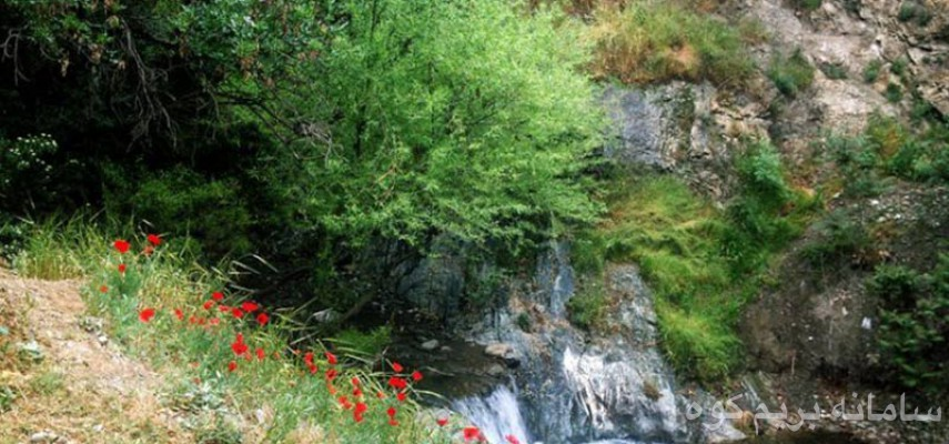 درکه ـ جنگل کارا