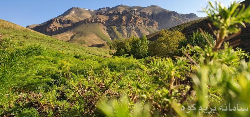 صعود قله چشمه شاهی