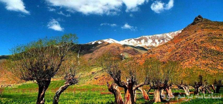 دشت هویج  قله پرسون