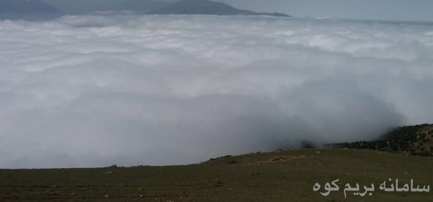 جنگل الیمستان ، قله امام زاده قاسم
