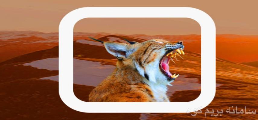 دوره آنلاین حیات وحش پستانداران کوهستان