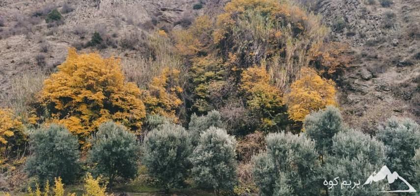 تور ترکیبی دو روزه شهرگردی و طبیعتگردی زنجان و آبشارهای وزنه سر طارم