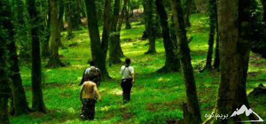پیمایش جنگل وچشمه آبگرم بلیران