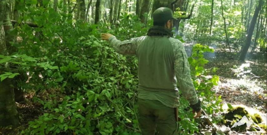 دوره ی عملی مقدماتی بقا در جنگل