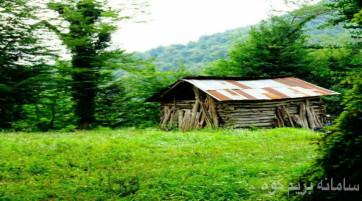 لرستان گردی و یک شب کمپینک در منطقه جنگلی