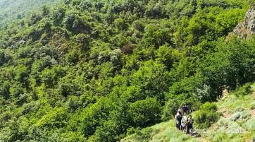 پیمایش مسیر نقره سر تا قله جنگلی