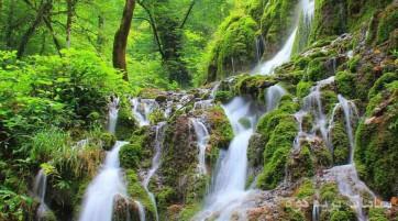 شیرین رود ساری